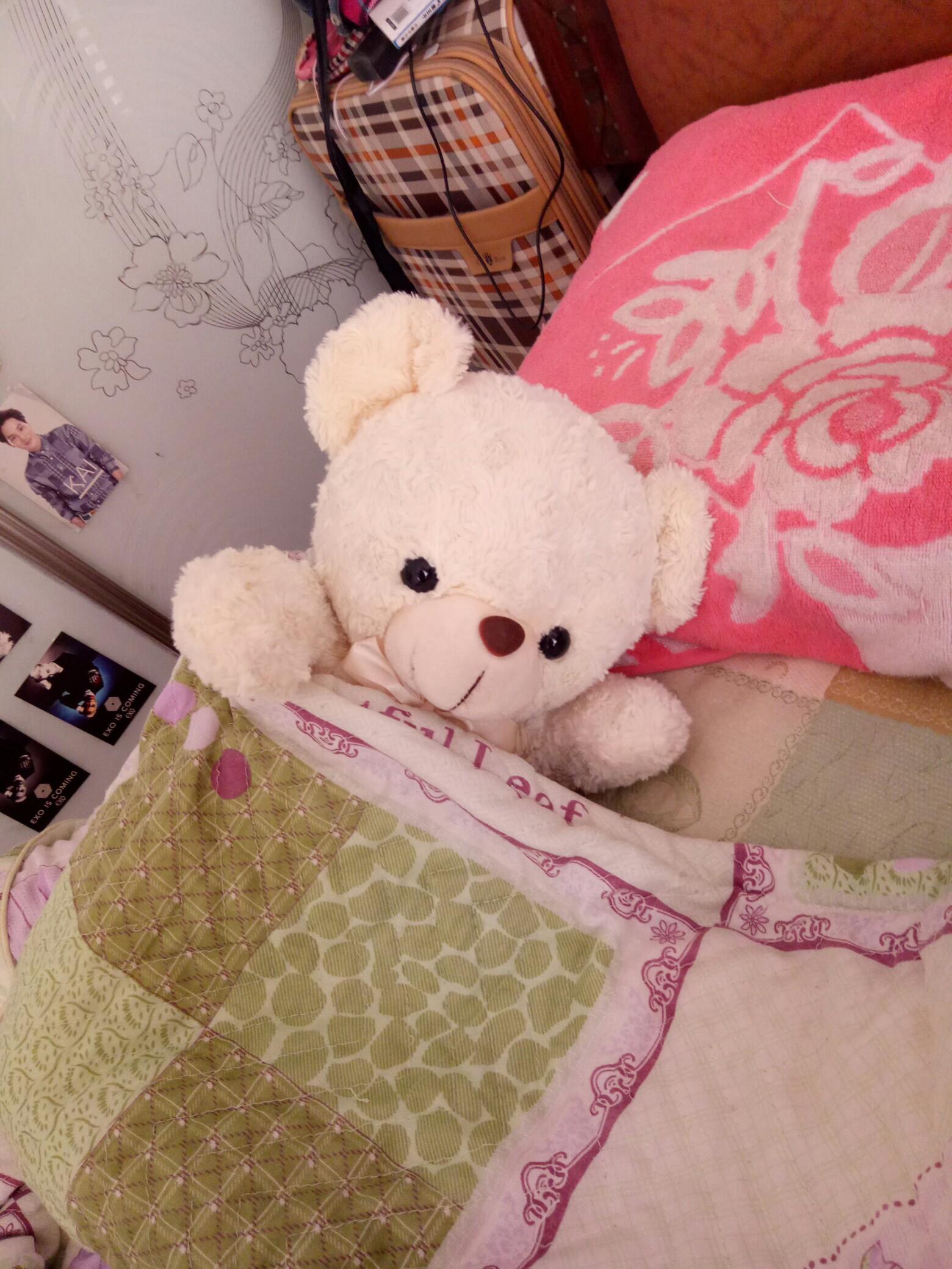 我的长的最乖最可爱的小白熊