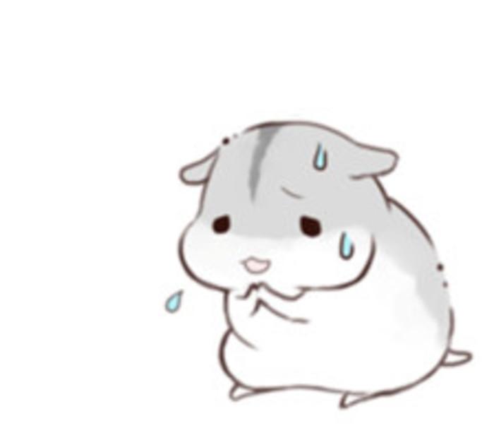 可爱小仓鼠_帖子_oppo手机官方社区