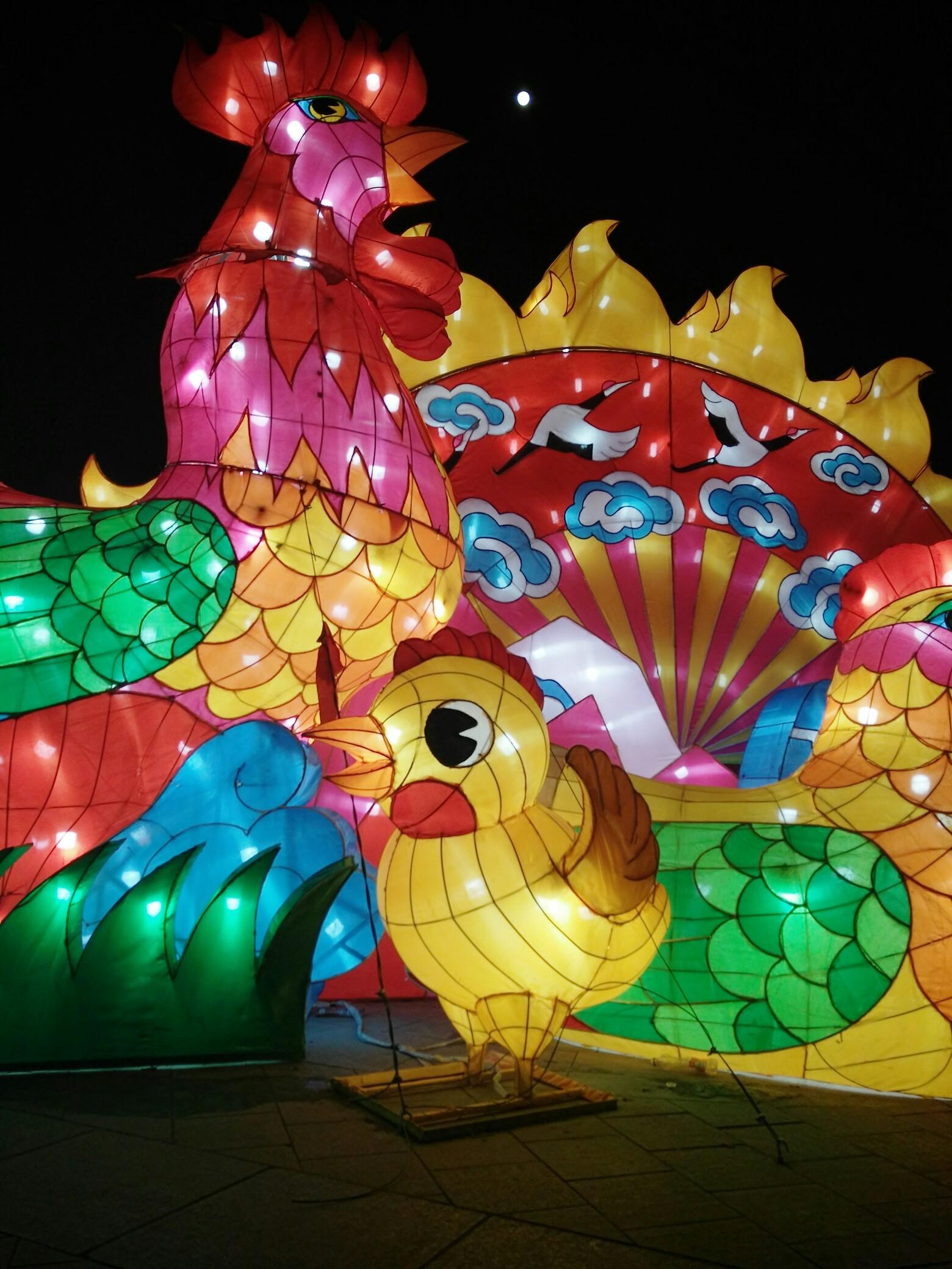 宜兴森林公园花灯