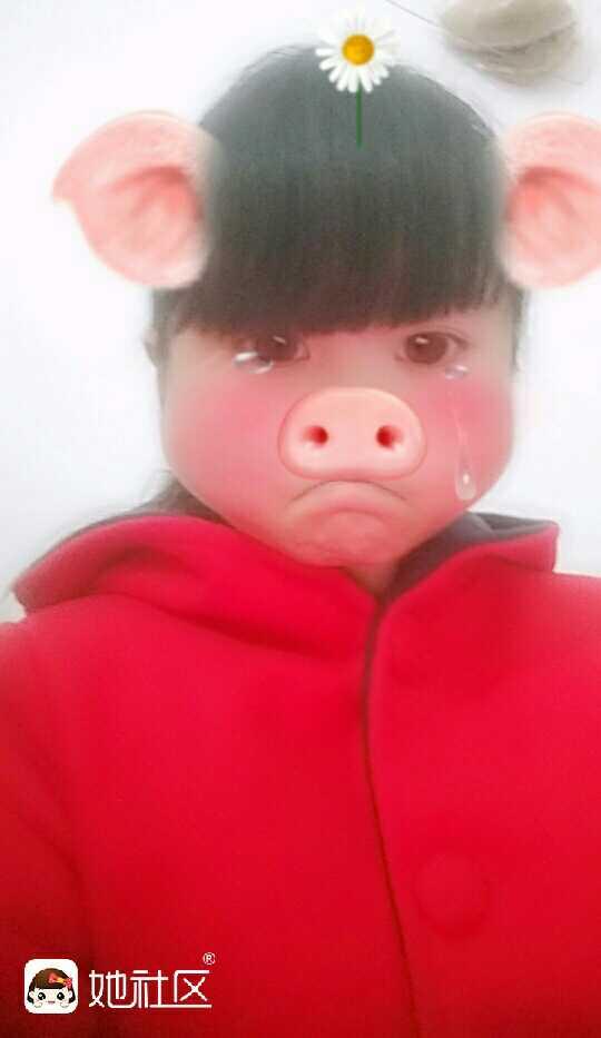 我家的俩个小猪猪好可爱