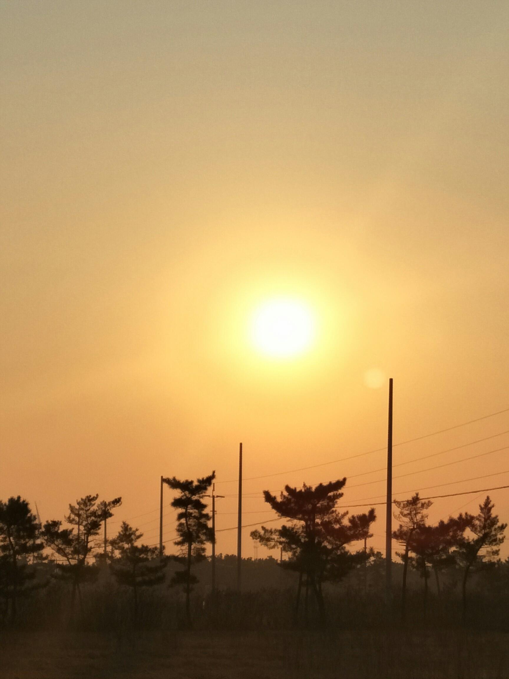 朝阳街道张庄村风景