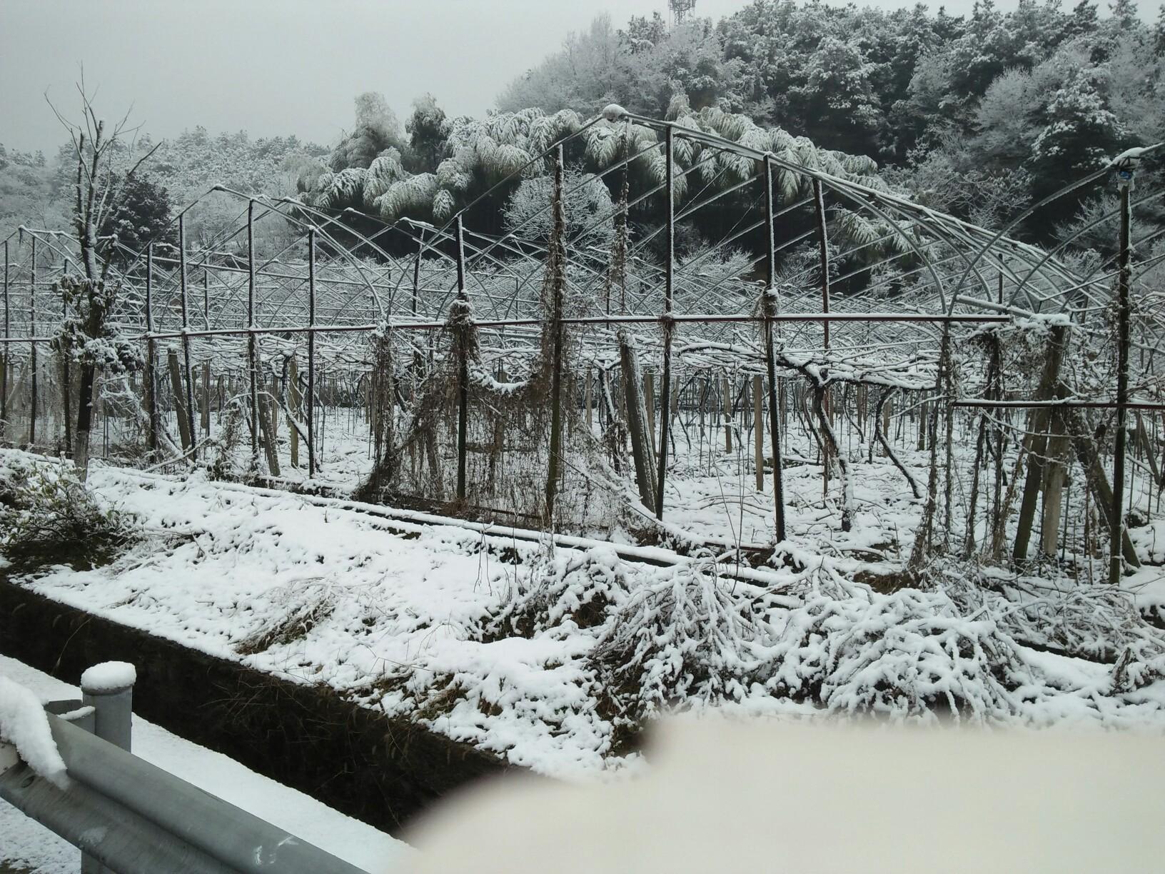 雪天风景水彩画