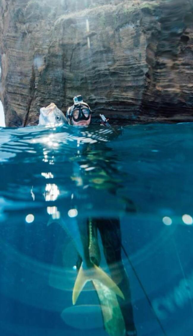 壁纸 海底 海底世界 海洋馆 水族馆 650_1133 竖版 竖屏 手机