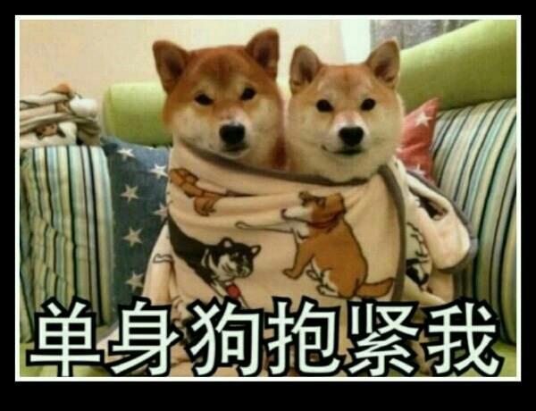 壁纸 动漫 动物 狗 狗狗 卡通 漫画 头像 600_460