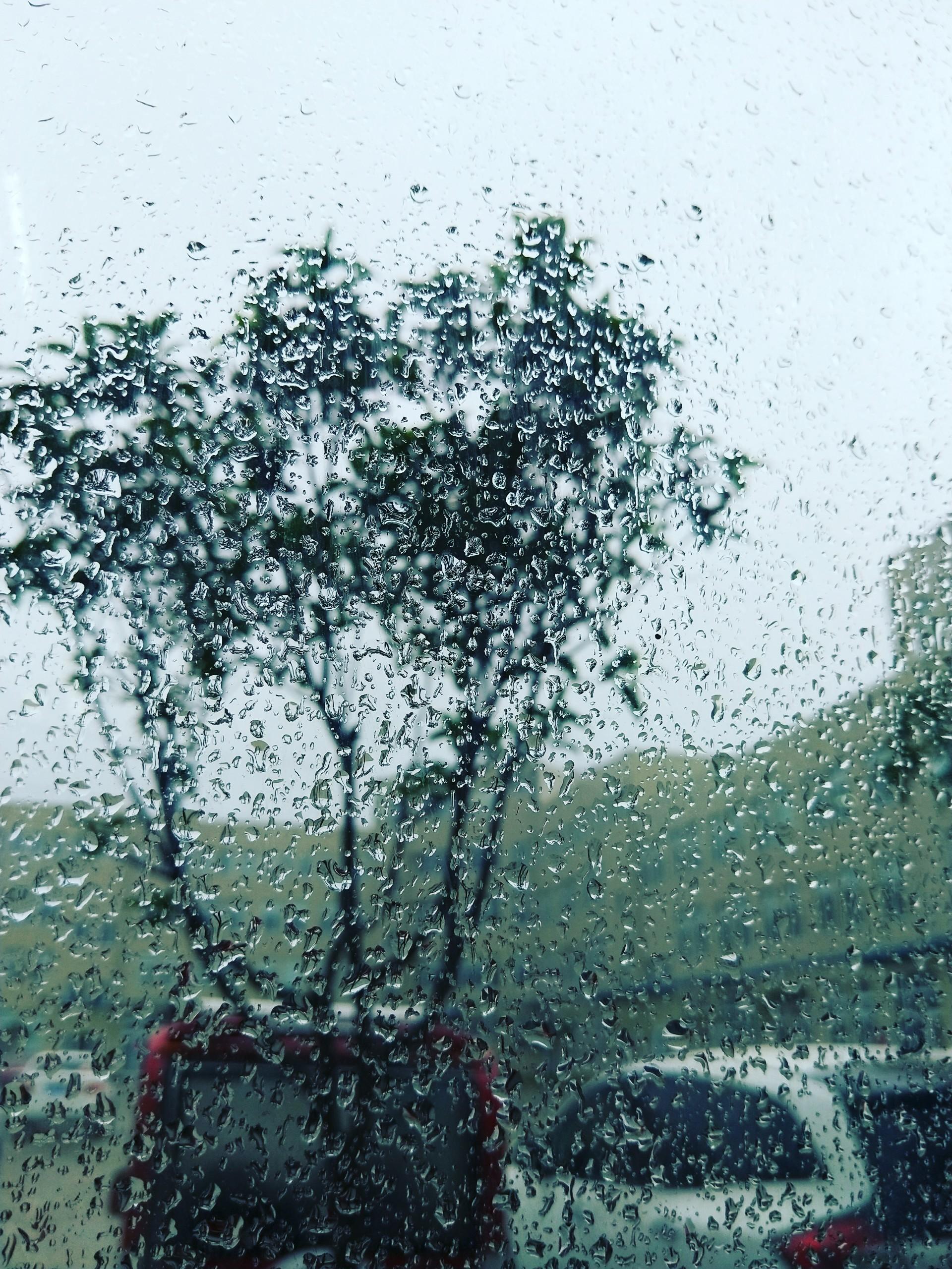 下雨天_帖子_oppo手机官方社区