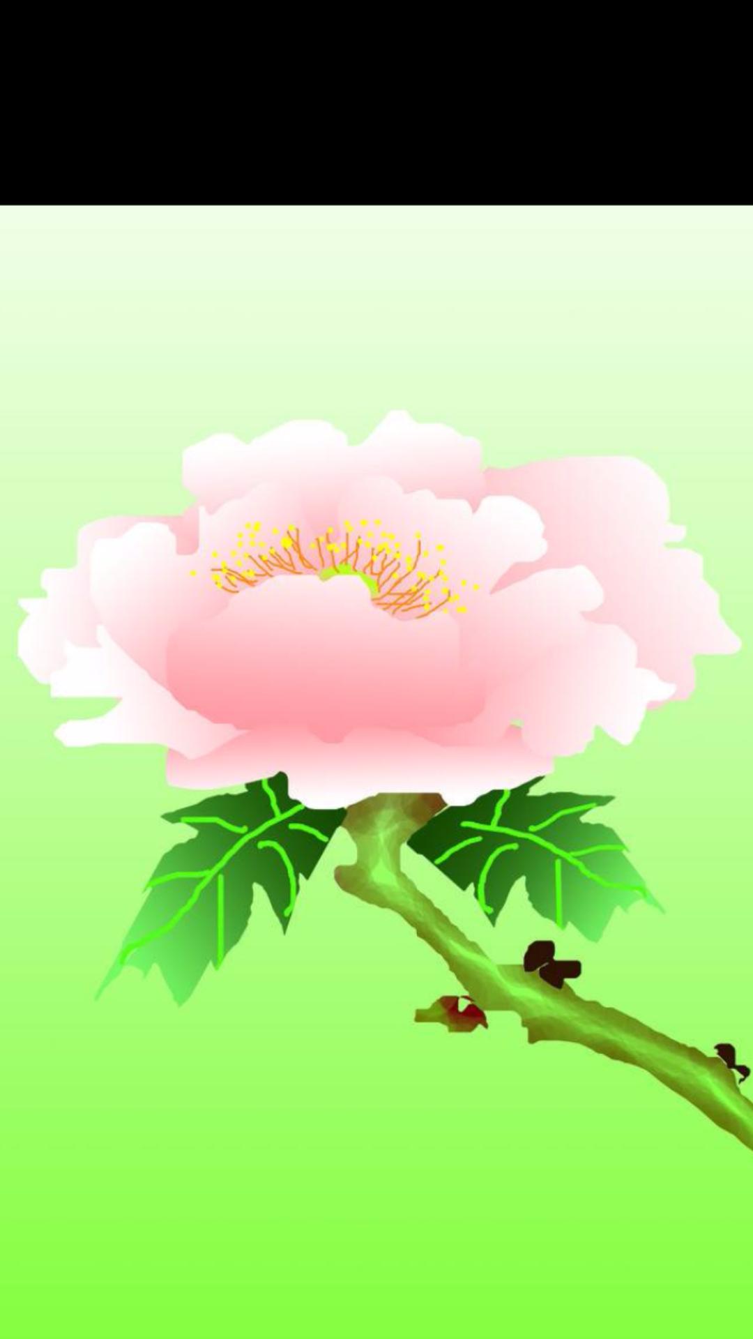 美丽的一枝花