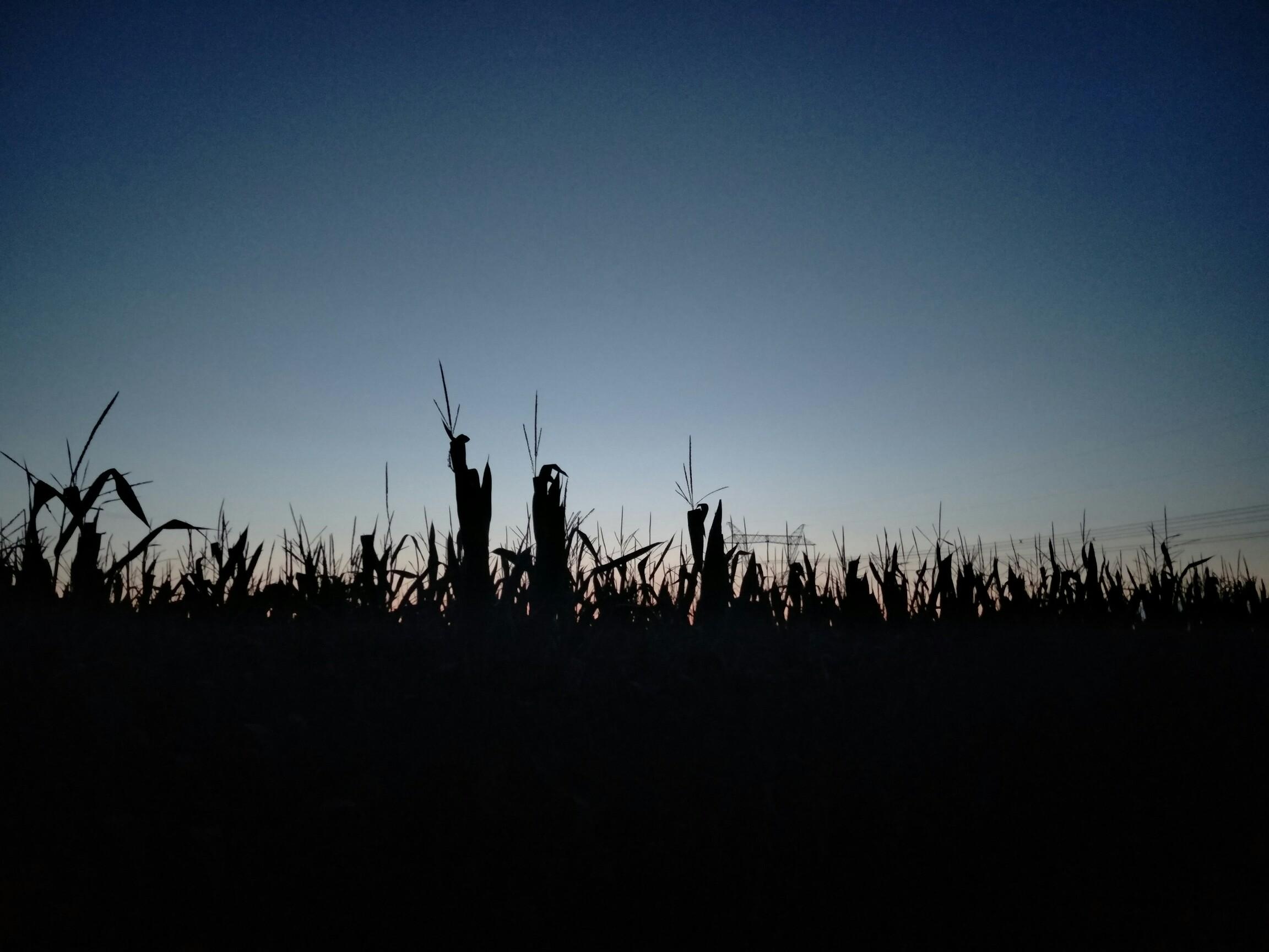 简笔画告诉你为什么夜晚的天空是黑的