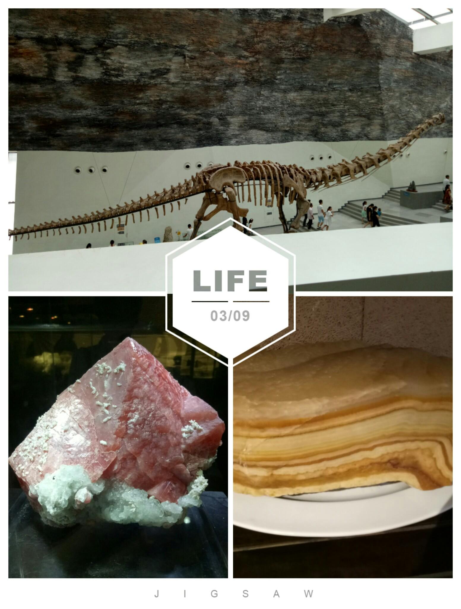 中华赏石园恐龙化石,下面的西瓜和五花肉可不能吃,不 帖子 OPPO