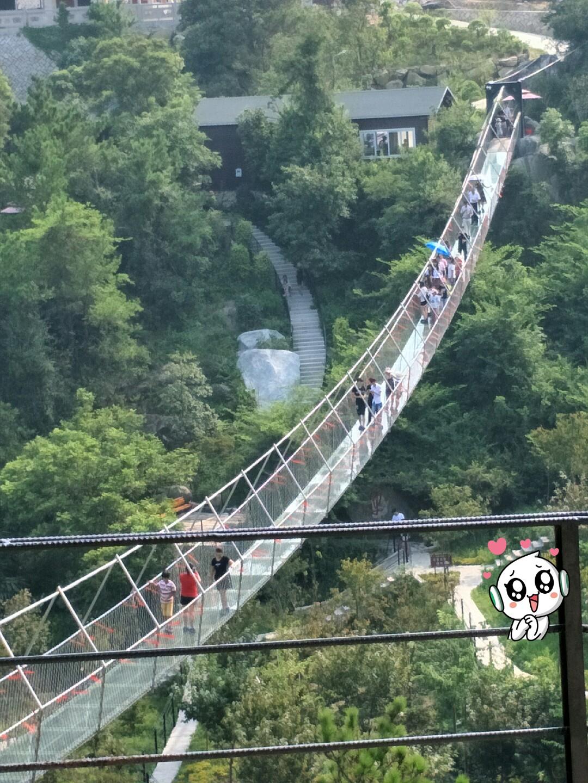 铁索玻璃桥