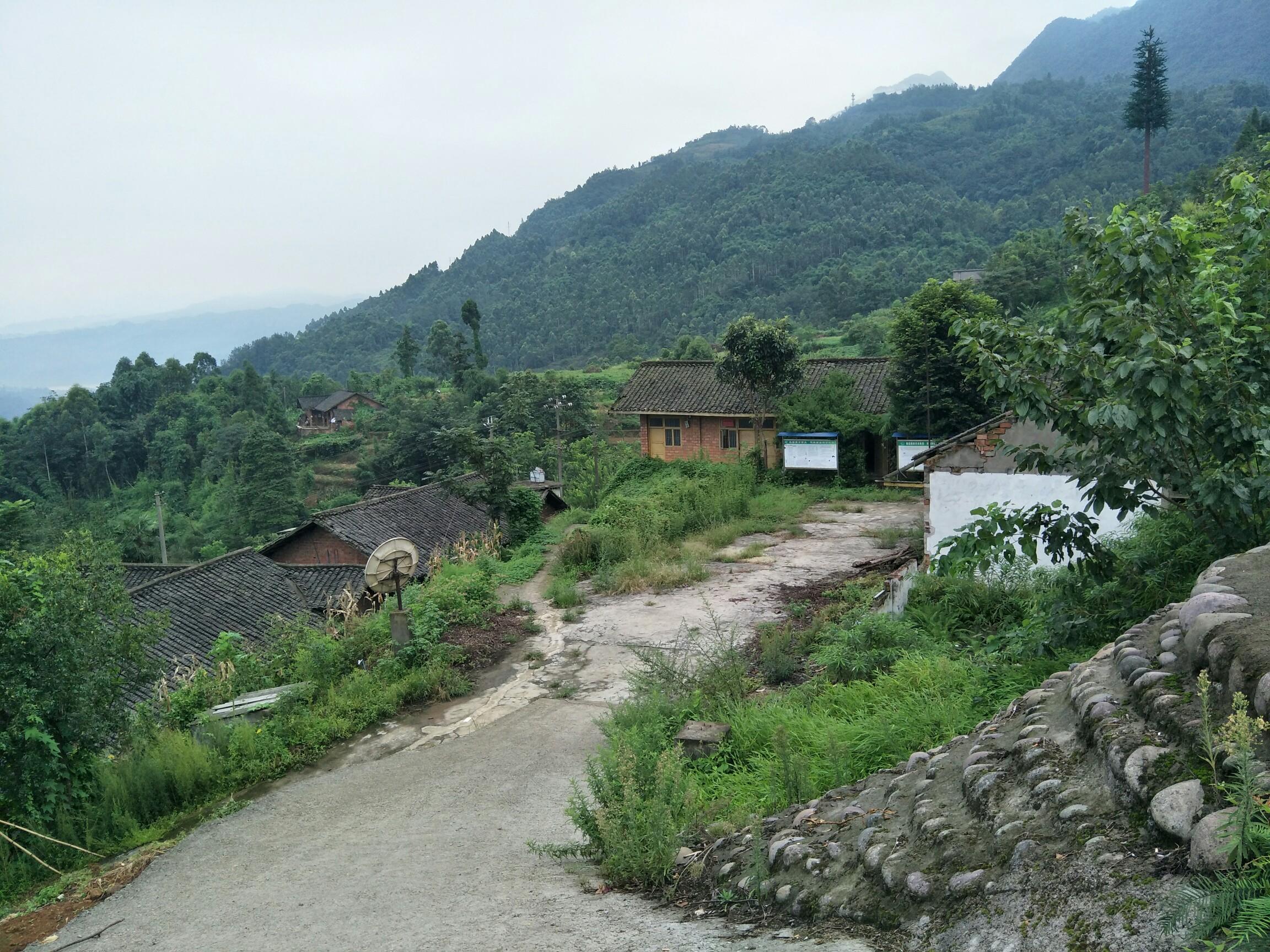 乐山美女峰森林公园分享展示