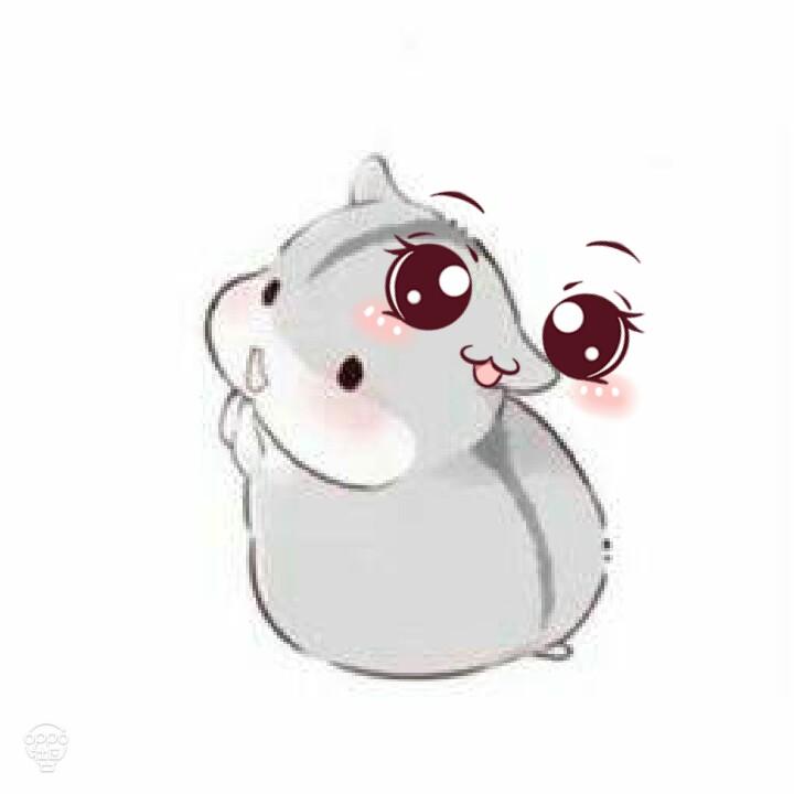 萌萌哒,小仓鼠