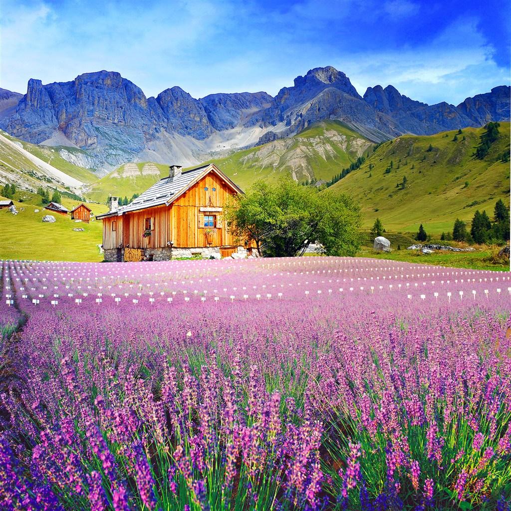 只有这么美丽的风景才能配得上这么美的你