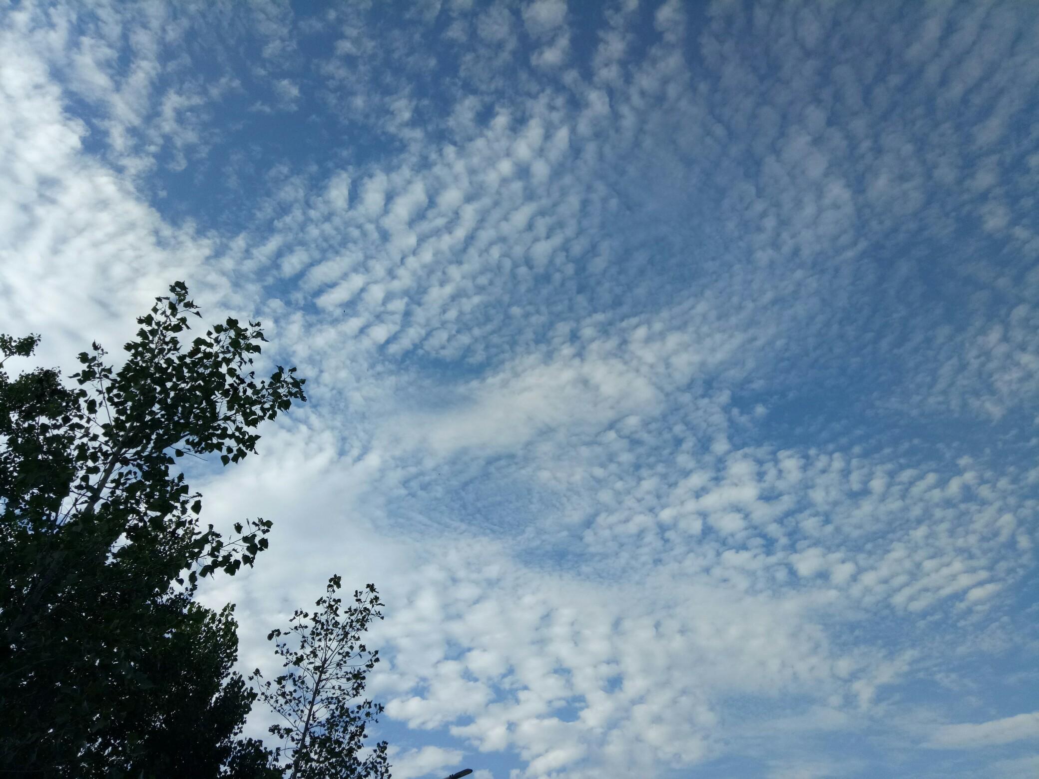 蓝天白云绿树