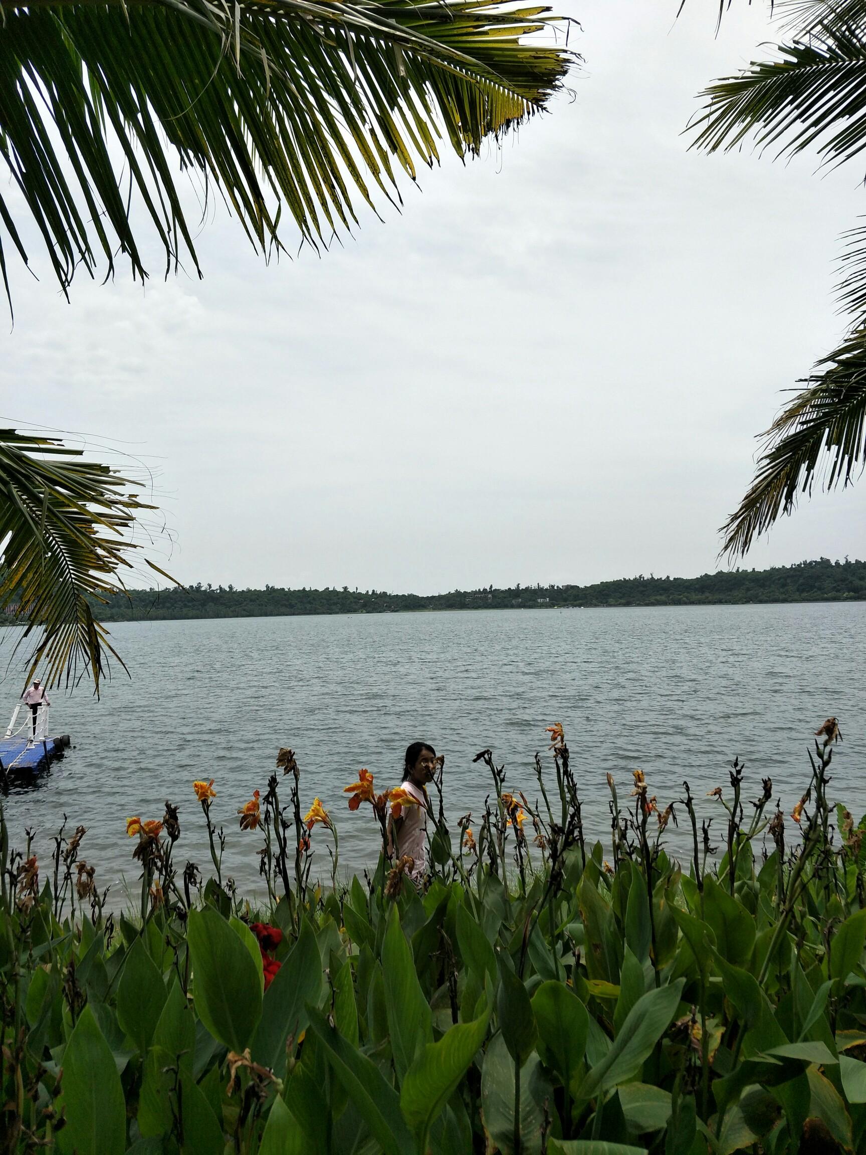 美丽的自然清水湖,风景优美,鱼仔成群