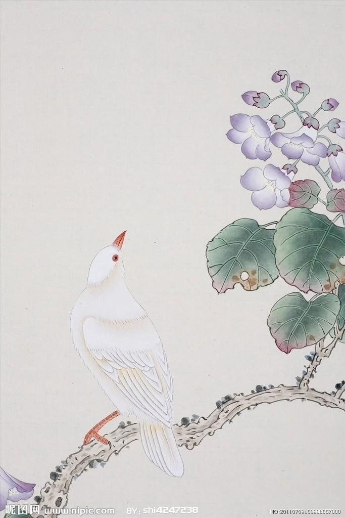 工笔画中的绝美小鸟