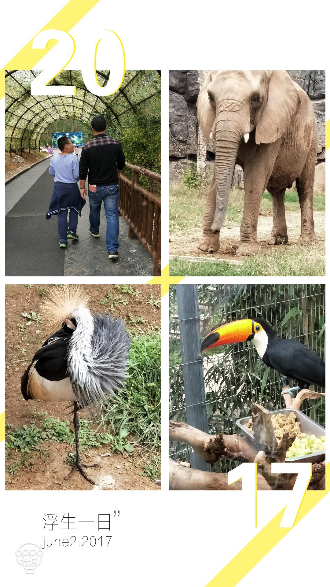 动物园一游