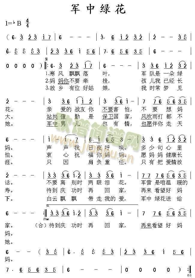 军中绿花简谱歌谱