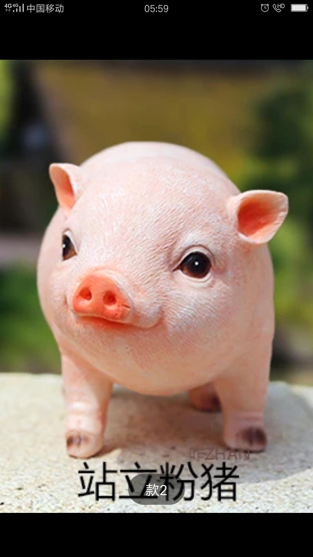 买了一个小猪猪,好可爱像真的一样